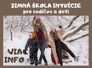 Zimnášskola intuície